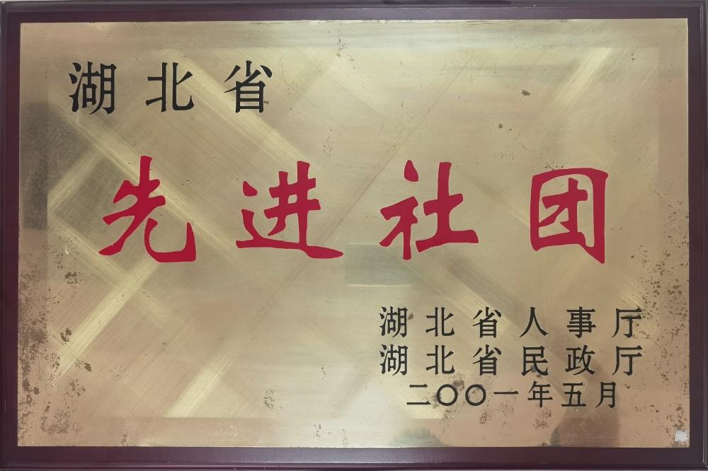 2001年5月被湖北省人事厅、民政厅评为省先进社团.jpg