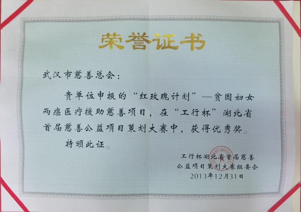 """2013年""""红玫瑰计划""""项目获""""工行杯""""湖北省首届慈善公益项目策划大赛优秀奖.jpg"""