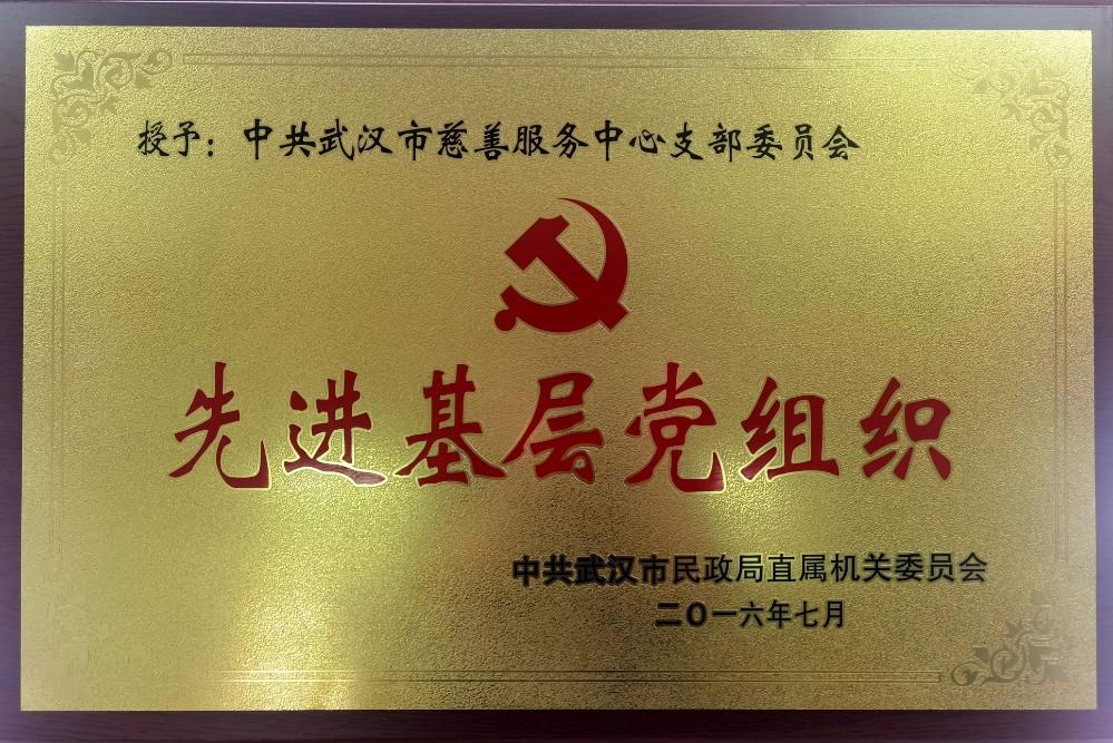 2016年被市民政局评为先进基层党组织.jpg
