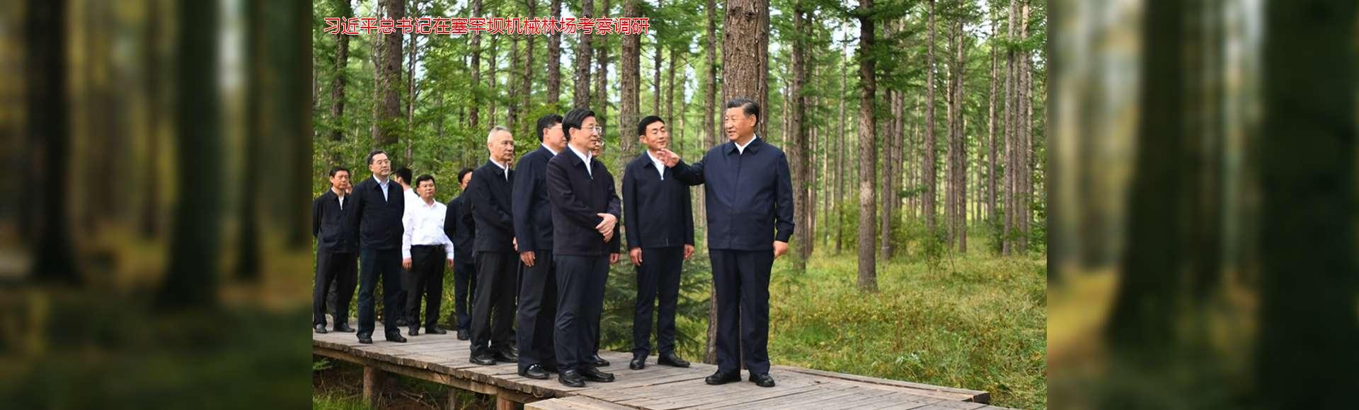 习近平总书记在塞罕坝机械林场考察调研